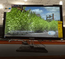Monitors offers, coupons, and promo codes