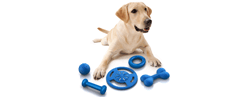 Pet Toys offers, coupons, and promo codes