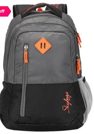 Skybags Footloose Leo 26 Ltr Grey & Black Medium Backpack