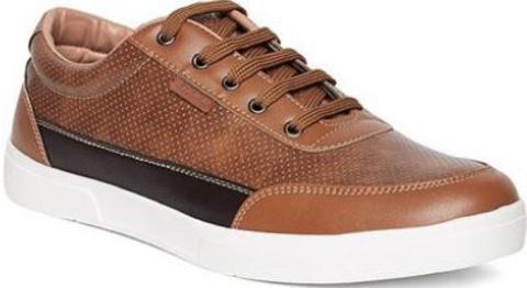 Duke Tan & Dark Brown Sneakers