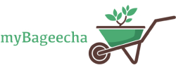 MyBageecha Coupons