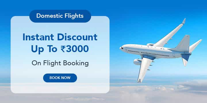 Domestic Flights Coupons